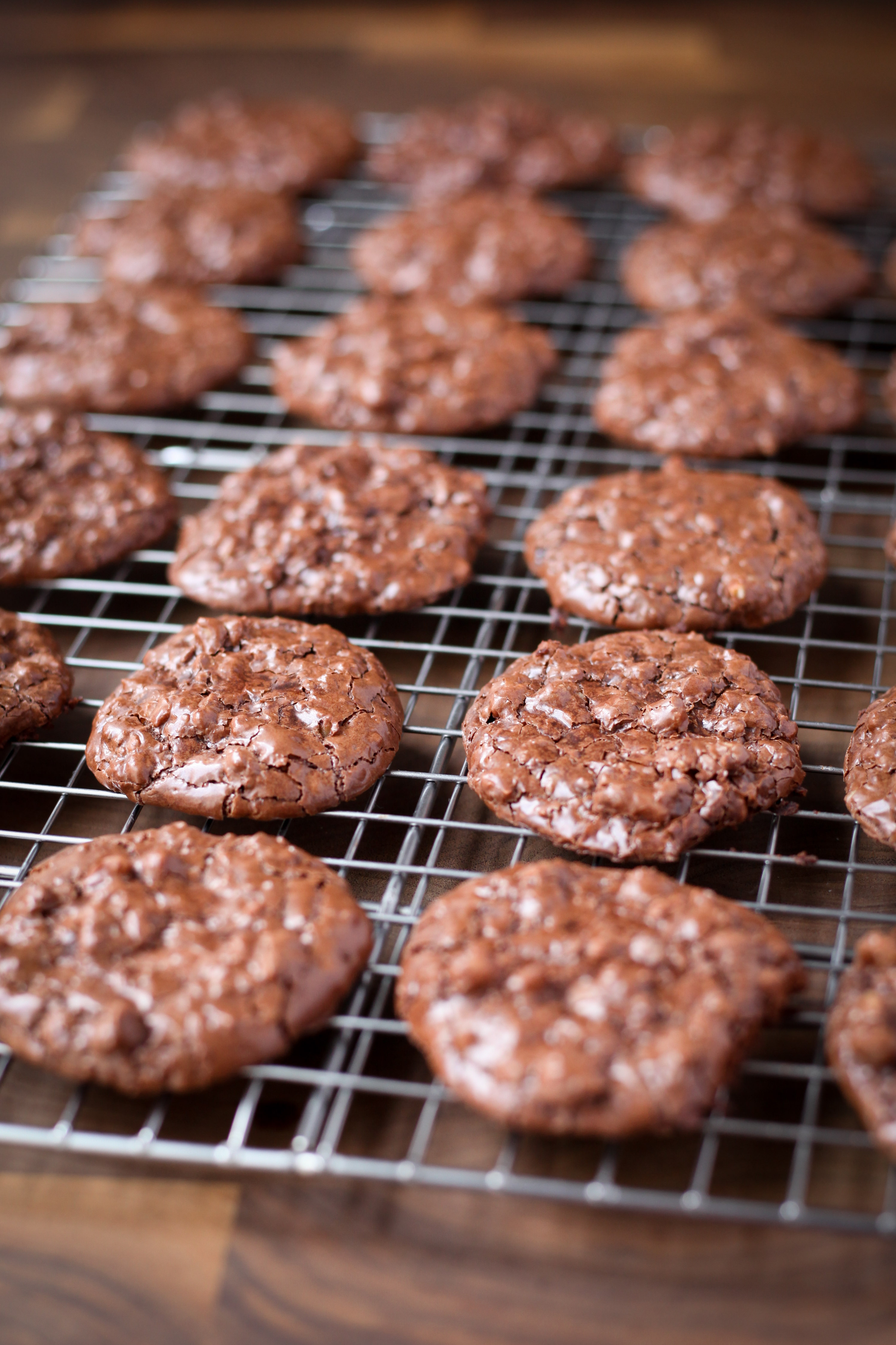 Flourless Chocolate Walnut Cookies | amodestfeast.com | @amodestfeast