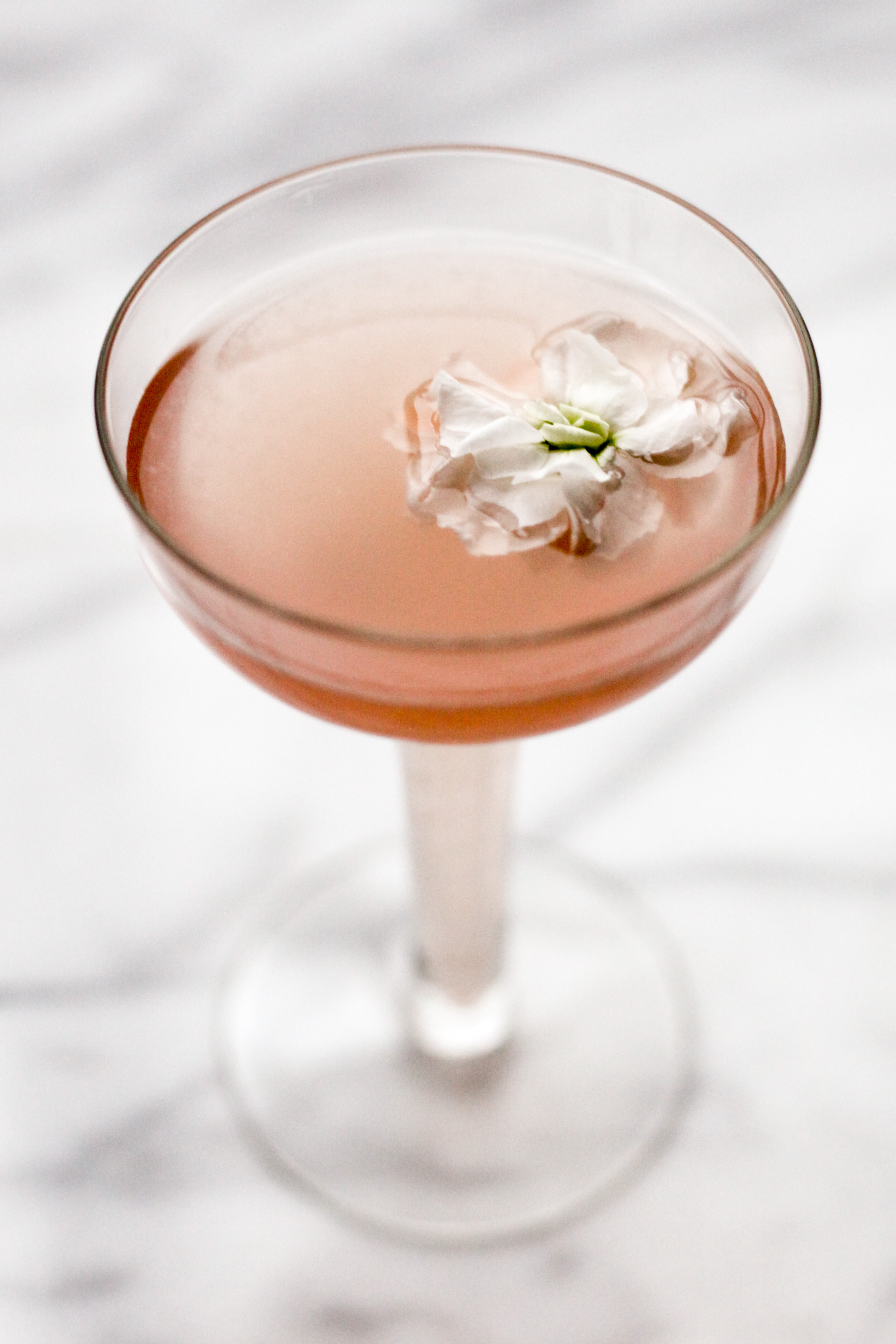 Lillet, Elderflower, and Grapefruit Gin Cocktail | amodestfeast.com | @amodestfeast