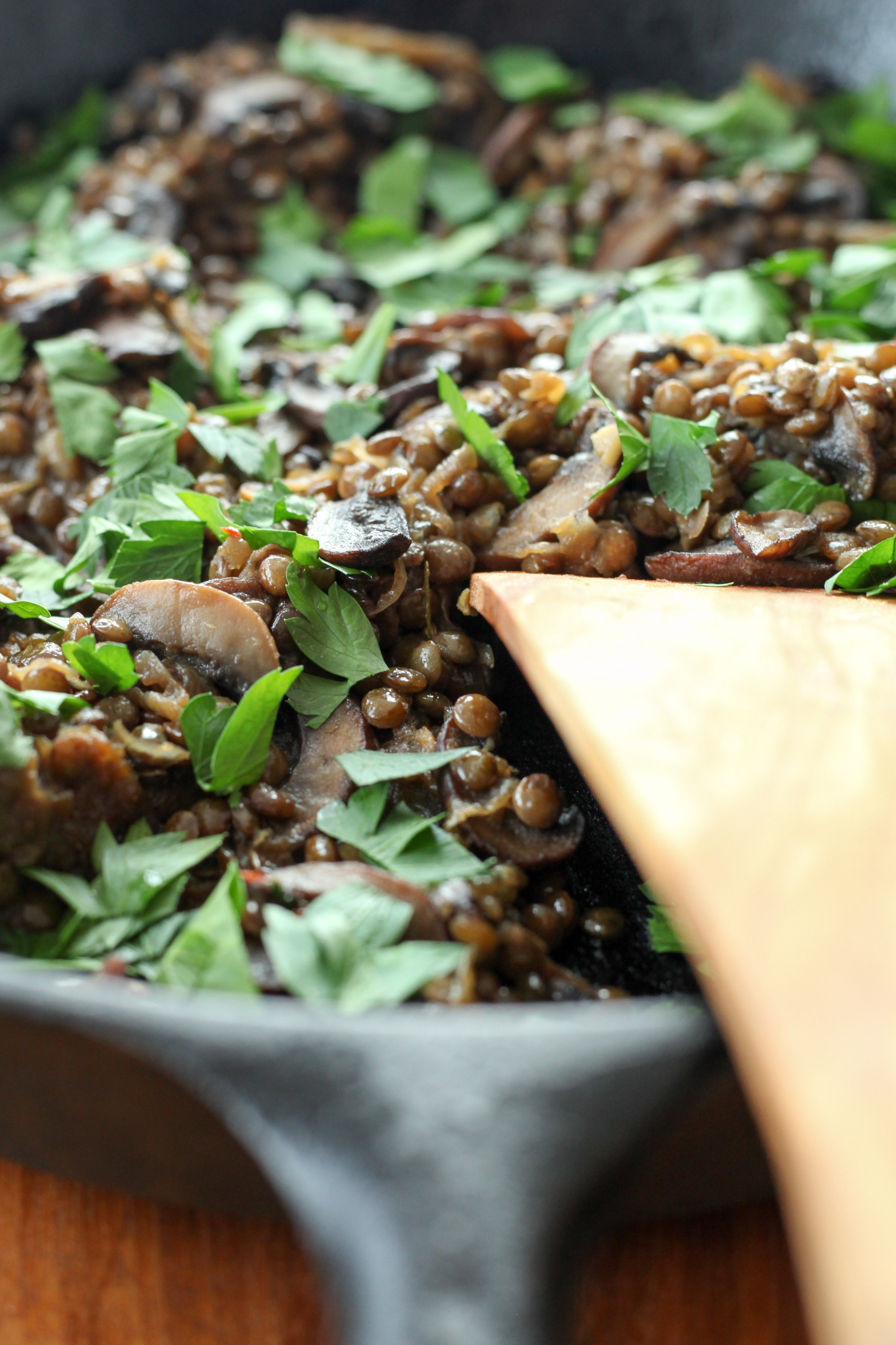 Lentils With Caramelized Onions and Mushrooms, and Lemony Yogurt (gluten-free, vegetarian) | A Modest Feast | @amodestfeast